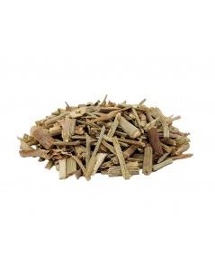 Tee von Zichorie - Cichorium intybus