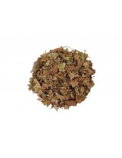 Té de Guayabo (Psidium guajava Linné)