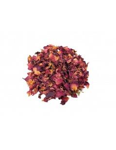 Tee-Rosen (Rosa L.)