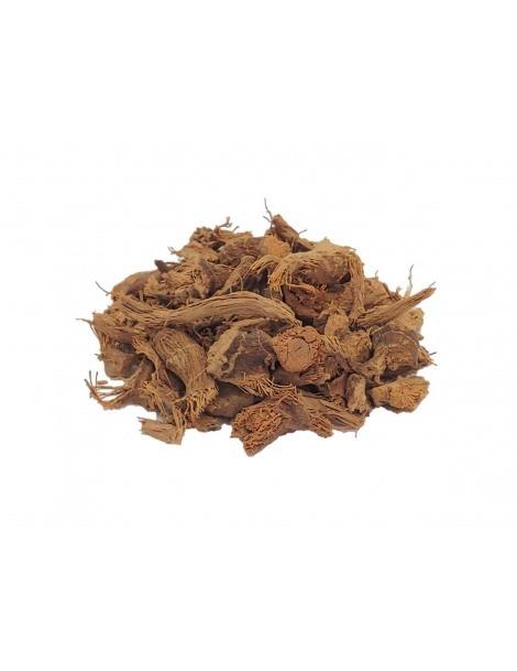 Raíz de Galanga (Alpinia galanga L.)