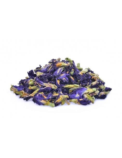 Butterfly pea flower tea (Clitoria ternatea)