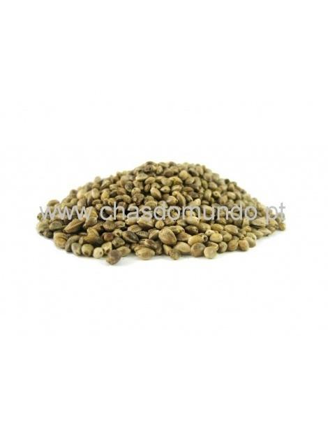 Sementes de Cânhamo Biológico (Cannabis Sativa)