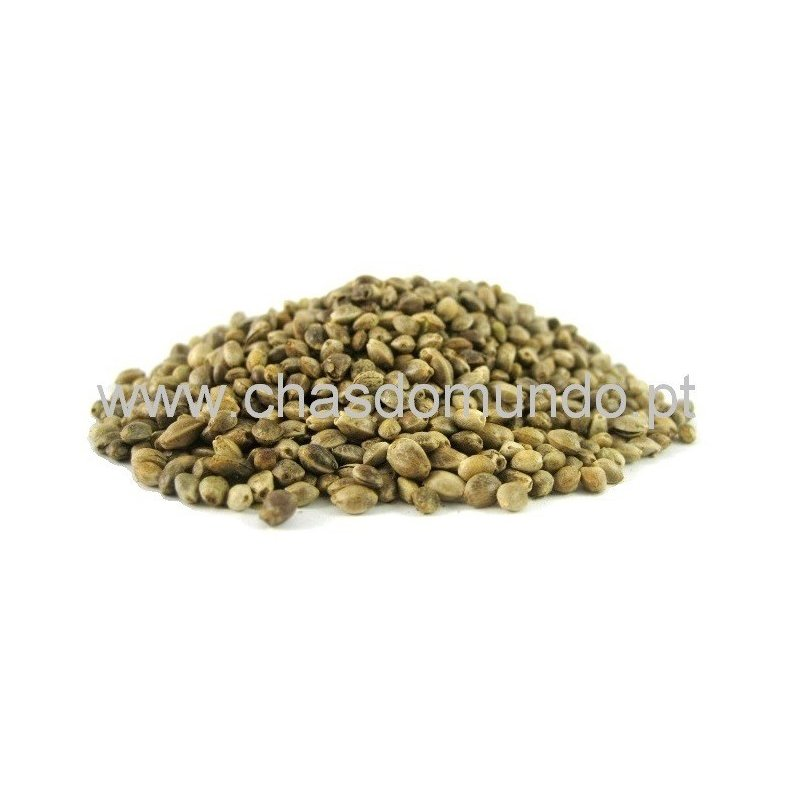 Hemp Seeds (Cannabis Sativa)