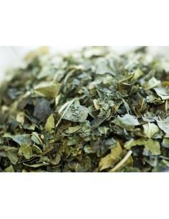 Chá de Amora Miura - Folhas de Amoreira - Morus Nigra