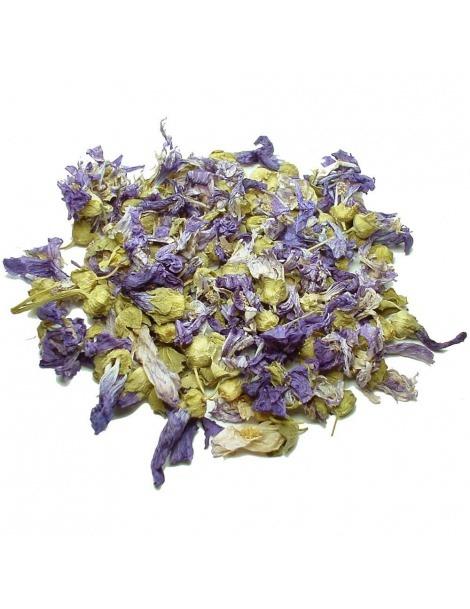 Té de Malvas en flor (Malva Sylvestris)