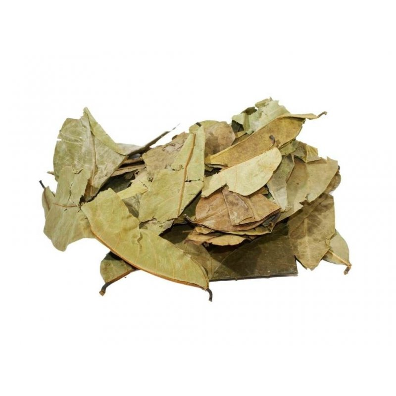 Graviola Tea - Annona muricata herbal tea