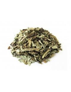 Chá de Cardo Mariano - Silybum Marianum