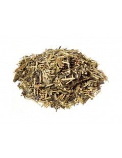 Japanischer Grüner Tee Kukicha