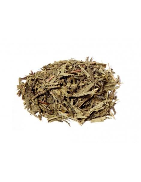 Japanischer Grüner Tee Bancha