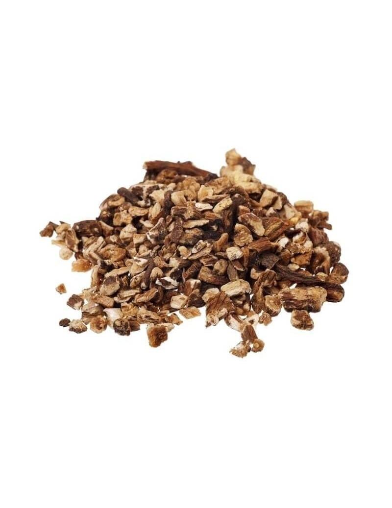 Dente di Leone in radice (Taraxacum officinale L.)