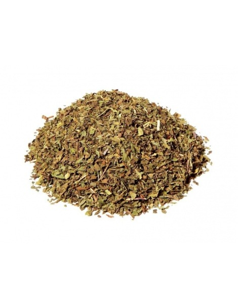 Thé a la Menthe poivrée (Mentha x piperita)
