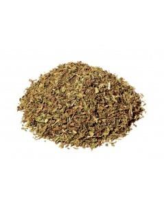 Minze Teeblätter