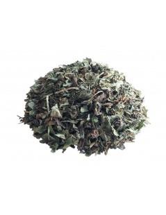 Chá de Cidreira - Melissa officinalis L.