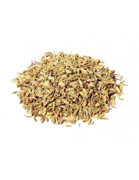 Semillas de Hinojo (Foeniculum vulgare)