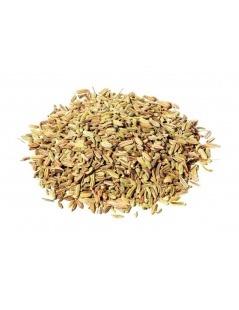 Chá de Funcho - Sementes de Funcho - Foeniculum vulgare