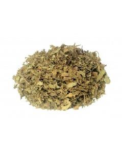Chá de Java - Orthosiphon aristatus