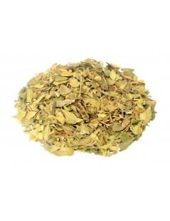 Tee aus Uva-Ursi