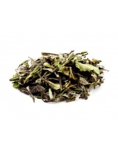 Chá Branco Pai Mu Tan