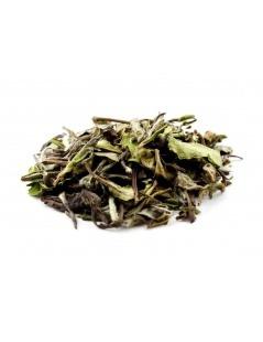 Thé blanc Pai Mu Tan - Camellia sinensis