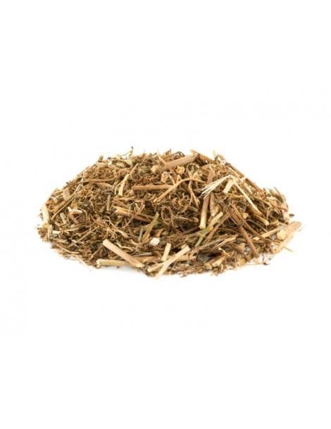 Fumária Officinalis (Fumitory)