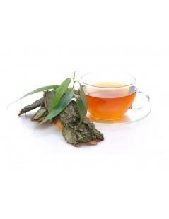 Ein Tee der Silberweide - Salix alba